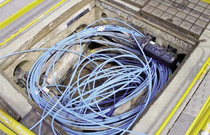 #المصري اليوم - مال - «الاتصالات»: خطة لرفع كفاءة البنية التحتية المعلوماتية موجز نيوز