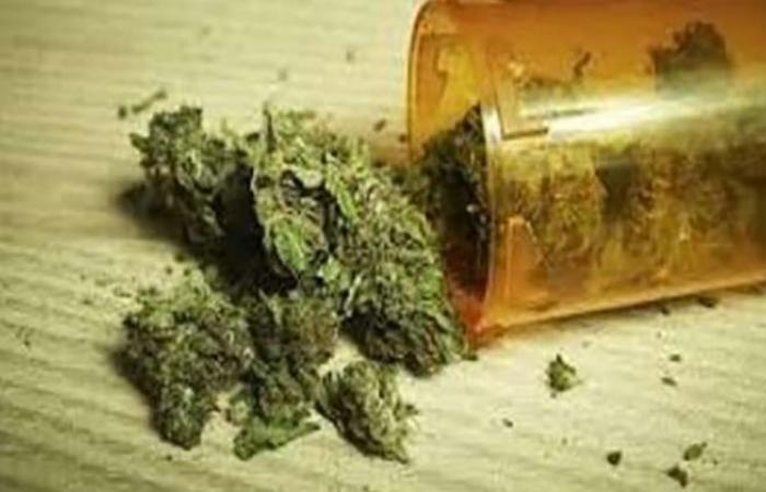 الوفد -الحوادث - ضبط كوكتيل مخدرات في حملات أمنية بالمحافظات موجز نيوز