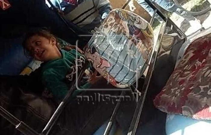 #المصري اليوم -#حوادث - حبس السائق المتهم بقتل السيدة مريم وابنها بـ«الساطور» في المنيا موجز نيوز