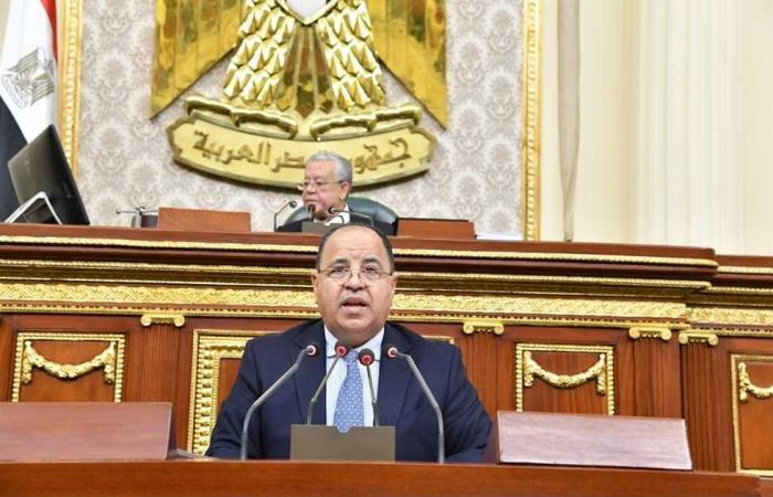 #المصري اليوم - مال - «المالية» تطلق شركة جديدة للحلول الضريبية موجز نيوز