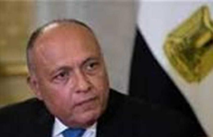 المصري اليوم - اخبار مصر- وزير الخارجية: سنتخذ كل الإجراءات لحماية أمننا القومي في التوقيت الملائم موجز نيوز