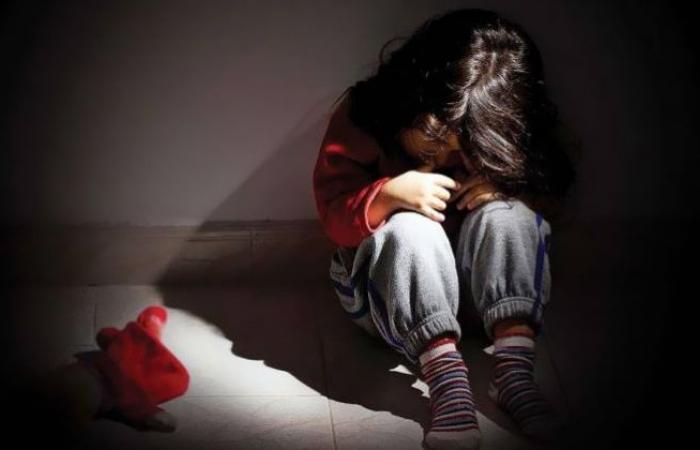 الوفد -الحوادث - الصياح أنقذها.. التحقيقات تكشف تفاصيل محاولة الاعتداء على طفلة الزاوية الحمراء موجز نيوز