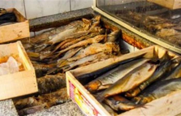 الوفد -الحوادث - ضبط طني أسماك مدخنة غير صالحة للاستخدام الآدمي بالغربية موجز نيوز