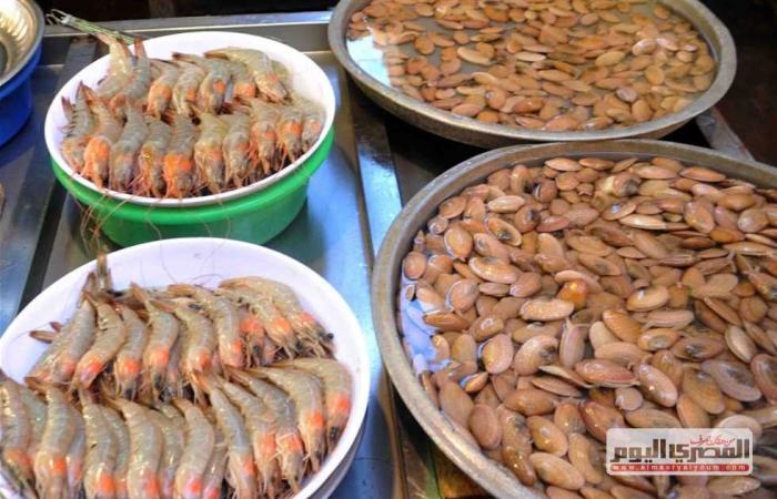 المصري اليوم - اخبار مصر- انخفاض قبل رمضان والبلطى بـ18 جنيه .. تعرف على سعر السمك فى مصر اليوم السبت 10-4-2021 موجز نيوز