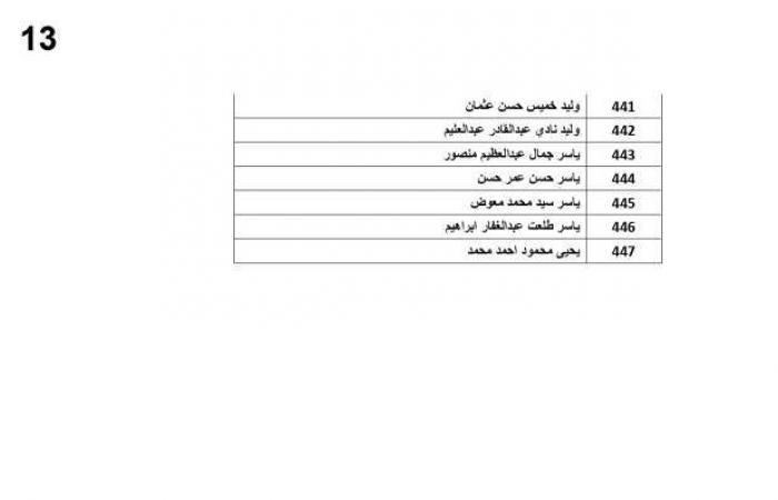 اخبار السياسه بالأسماء.. القوى العاملة تحول6.2 مليون مستحقات عمالة غادرت الأردن