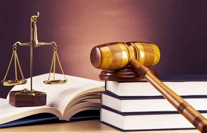 #المصري اليوم -#حوادث - السجن 8 سنوات لـ أحمد بسام زكي في «التحرش الجنسي بفتاتين» موجز نيوز
