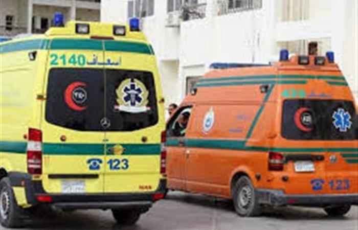 #المصري اليوم -#حوادث - إصابة عامل في حادث تصادم سيارة بـ«عربة كارو» بالمنيا موجز نيوز