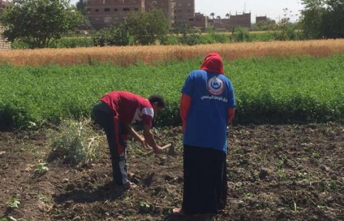 اخبار السياسه «الصحة» تجوب قرى ونجوع محافظات الصعيد الأعلى إصابة بفيروس كورونا