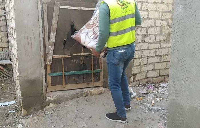 المصري اليوم - اخبار مصر- توزيع 1000 كرتونة مواد غذائية على غير القادرين في البحيرة موجز نيوز
