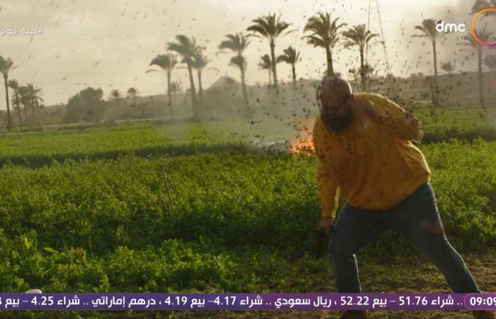 #اليوم السابع - #فن - لعبة نيوتن.. تامر محسن يستخدم النحل المليء بالفائدة فى القتل والمخدرات