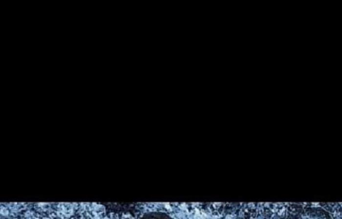 اخبار السياسه «الصنارة القاتلة»..مأساة غرق شاب أثناء الصيد بالبحيرة وانتشال جثمانه بعد 3 أيام