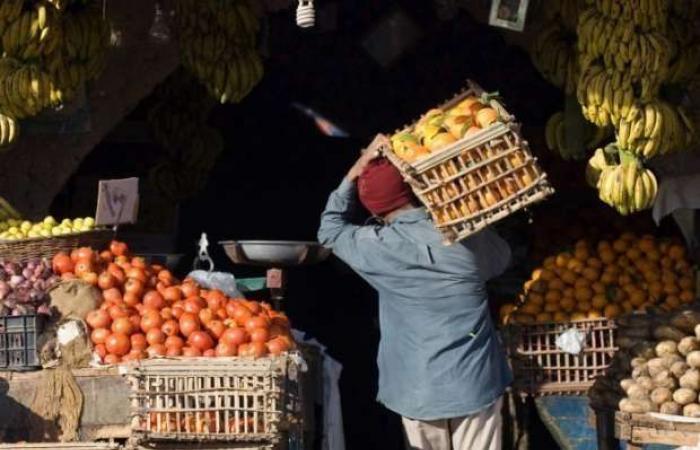 اخبار السياسه حقيقة وجود بطيخ وخوخ وأناناس «مهرمن».. «الغرف»: هذا سر كبر الفاكهة
