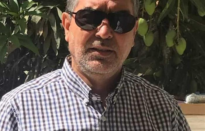 #المصري اليوم -#حوادث - تحرير 10 محاضر تموينية في شمال سيناء موجز نيوز