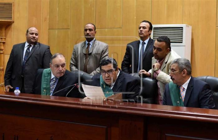 #المصري اليوم -#حوادث - المؤبد لـ5 متهمين بـ«خلية اللجان النوعية» موجز نيوز