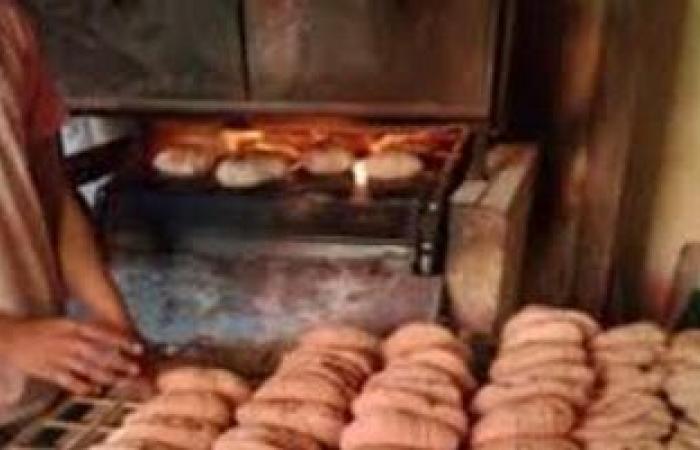 #اليوم السابع - #حوادث - ضبط 34 مخبزا لإنتاجها خبزا مخالف المواصفات وتهريب الدقيق المدعم بالبحيرة