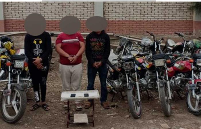 #المصري اليوم -#حوادث - القبض على تشكيل عصابي تخصص في سرقة الدراجات النارية والتوك توك بالغربية موجز نيوز