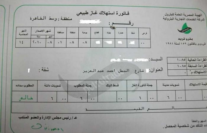 #المصري اليوم - مال - لتجنب الغرامات.. 9 وسائل لدفع فاتورة الغاز الطبيعي إلكترونيا (الروابط) موجز نيوز