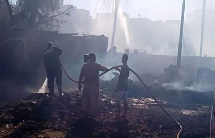 الوفد -الحوادث - إخماد حريق هائل بعدد من المنازل والأحواش في الأقصر موجز نيوز