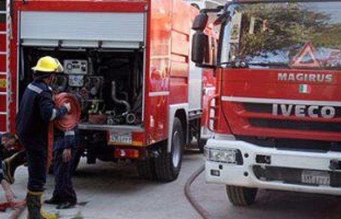 #اليوم السابع - #حوادث - السيطرة على حريق هائل فى مزارع نخيل بقرية الجديدة فى الوادى الجديد