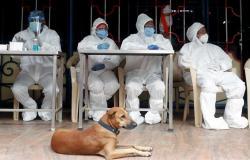 #المصري اليوم -#اخبار العالم - إصابات كورونا في الهند تتجاوز 6 ملايين حالة موجز نيوز